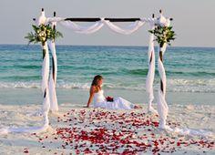 Bowling Green Wedding Photography