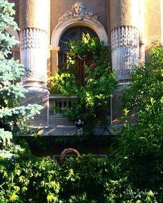 Icoanei Garden - photo by Dana Stefanescu Bucharest Romania, Garden Photos, Paris, Montmartre Paris, Paris France