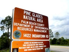 Pine Glades Natural Area near Jupiter Farms, check it out and other videos at: www.youtube.com/richardsites