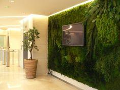Mur végétal de décoration aux plantes naturelles artificielles stabilisées sans entretien