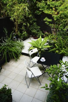 AILDM Awards gardens | GardenDrum Silver Award Chris Webb Garden Design