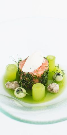 Salmon, compressed cucumber, oyster ceviche and oyster mayonnaise
