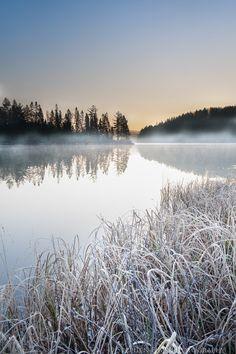 CANADA Algonquin Provincial Park, Ontario Hamilton Photographer by Stephen Elms Park Photography, Winter Photography, Landscape Photography, Ontario Provincial Parks, Ontario Parks, Ontario Travel, Algonquin Park, Canadian Winter, Autumn Scenes