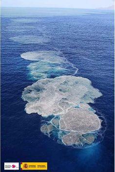 Erupción submarina Canarias 04