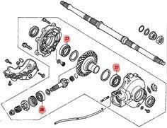 honda 300 fourtrax rear end diagram | Honda Fourtrax Rear Differential Diagram