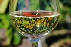 The reflection in the wine glass is beautiful!