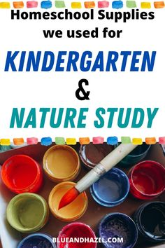 Here's our homeschool supplies list for kindergarten and nature study! See our organization, art supplies, printer model, and practical things to have on hand in your homeschool. Here's what we used the most and what you don't actually need. #blueandhazel #homeschooling #kindergarten #naturestudy Play Based Learning, Learning Through Play, Fun Learning, Learning Activities, Free Activities, Early Learning, Kindergarten Readiness, Homeschool Kindergarten, Homeschool Curriculum
