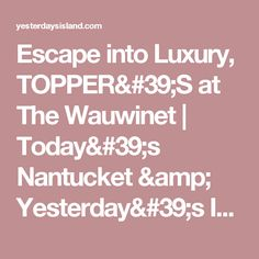 Escape into Luxury, TOPPER'S at The Wauwinet | Today's Nantucket & Yesterday's Island