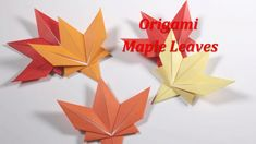 折り紙  紅葉