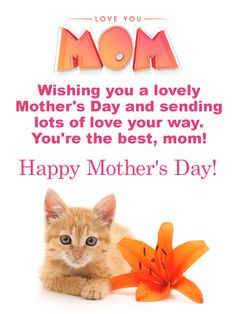 Send Free Flower & Kitten Happy Mother's Day Card to Loved Ones on Birthday & Greeting Cards by Davia. It's free, and you also can use your own customized birthday calendar and birthday reminders. Mothers Day Wishes Images, Happy Mothers Day Wishes, Happy Mother's Day Card, Happy Mother's Day Greetings, Happy Mother S Day, Mothers Day Cards, Mothers Love, Card Birthday, Birthday Greeting Cards
