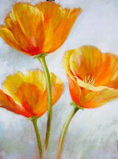 Californian Poppies- Sunshine Girls