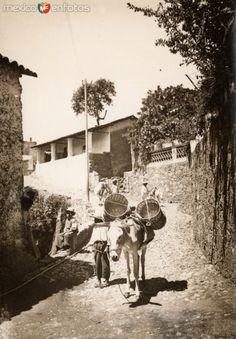 Arriero en Taxco. Cortesía: www.MexicoEnFotos.com (Mexico)
