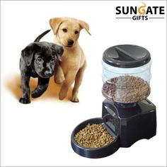 a2ae62557929 Automatic Pet Feeder With Voice Message Recording