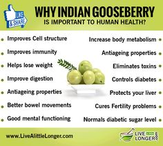 Here's an incredible list of Indian gooseberry benefits for your health! For Your Health, Health And Wellness, Health Tips, Benefits Of Berries, Fertility Problems, Micro Nutrients, Bowl Of Cereal, Help Losing Weight