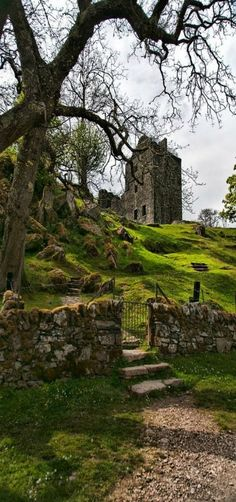 Castle Carnasserie, Scotland | Ruins | by Kelly Johnson