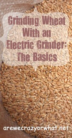 Step by step directions for grinding wheat in an electric grinder. #beselfreliant