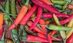 Bird Peppers (Hot)