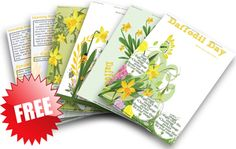 Programming and planning resources and ideas for Early Childhood - Daffodil Day