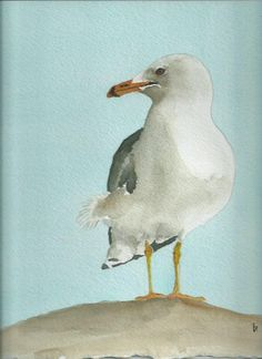 Seagull watercolor painting 8 x 10 print beach home by bMoorearts