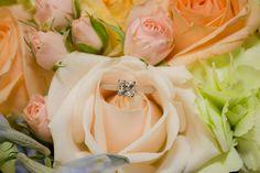 Kylie Williams Photography Brisbane to Gold Coast, newborn and family photographer Newborn Photographer, Family Photographer, Photographic Studio, Fine Art Photography, Bling, Jewelry, Jewel, Jewlery, Jewerly