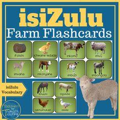 isiZulu Farm Flashcards by Treasures for Thematic Teaching Zulu Language, English Phonics, English Writing Skills, Kindergarten Worksheets, Kids Learning, I Am Awesome, Teaching, Languages, Cow