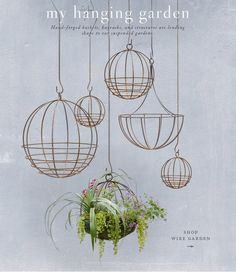 hanging greenery- not only for plants and herbs, but I would store some of my root vegetables and fruit in them- beautiful...