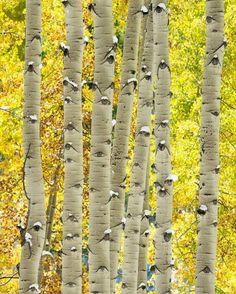 A természeti jelenségek sokszor szebbek, mint a szerkesztett képek.