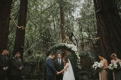 Cool 55+ Awesome Redwood Forest Wedding Venues For Perfect Wedding  https://oosile.com/55-awesome-redwood-forest-wedding-venues-for-perfect-wedding-8528