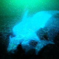 The Antlers - Drift Dive by antirecords on SoundCloud