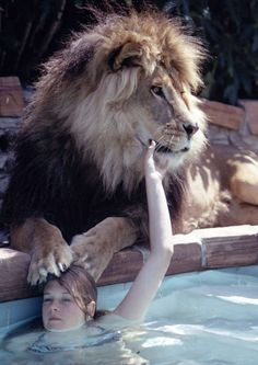 "Tippi Hedren. With her lion, Neil. In 1970. ""I'm out in the pool, with my lion, take a message."" Haha"