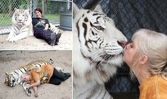 Woman keeps two tigers in her garden treating them like normal pets #DailyMail and amazingly look healthier than those in zoos.