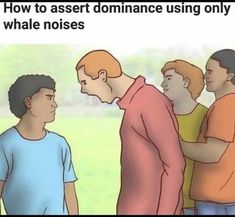 Funny and Stupid Re-captioned WikiHow Images