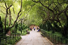 a bike ride, stroll, picnic through Central Park. <3