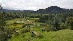 Pedesaan di Sumatera Barat