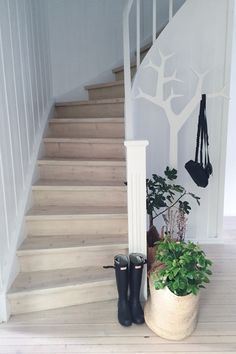 Hallway Hallways, Stairways, Inspiration, Home Decor, Cloakroom Basin, Runners, Foyers, Staircases, Biblical Inspiration