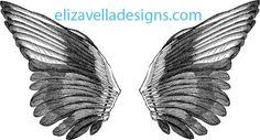 Angel bird wings clipart png clip art Digital graphics Image Download printable wall art downloads digi stamp digital stamp black & white