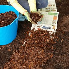 As a time-saver for you and a lifesaver for plants, spread a layer of shredded bark, chopped leaves, compost, or another material over the soil between plants—nature's way of recycling! A 2- to 3-inch layer of mulch is one of the best multitasking materials for gardens, including beds and containers. Mulch conserves soil moisture, blocks weeds, insulates soil and plant roots from extreme temperatures, prevents erosion, and attracts earthworms (nature's soil builders).