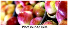 Find a farmers market near you with the Farmer's Market locator tool- you can filter your search to show winter markets, markets that accept debit cards, and find markets on certain days of the week! Talk with the vendor to determine if they are the farmer and producer of the their food, where their farm is located and to learn about their growing practices and then you can be confident you are shopping like a #Locavore