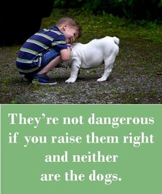 They're not dangerous if you raise them right and neither are the dogs.