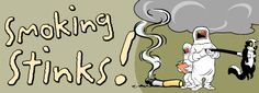 Smoking Stinks! Aligned with VT health standards