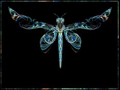 Dragonflies Artwork | fractal manipulation fractals rendered in apophysis and edited ...