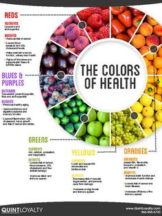 Employee Wellness - the colors of health