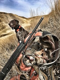 Nothing like chukar hunting with our German Shorthair Pointer! Hunting Dogs, Hunting Birds, Birds For Sale, German Shorthaired Pointer, Outdoor Gear, Survival, Puppies, Hunts, Bbq