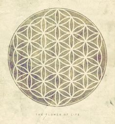 The Flower of Life | Sacred Geometry and Spiritual Architecture