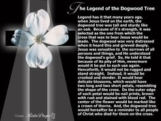 Legend of the Dogwood Tree
