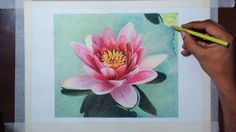 Water lily Flower Drawing Tutorial by fadil. Does not give step by step with words but does by sight. Pretty and fun to watch. Please also visit www.JustForYouPropheticArt.com for more colorful art you might like to pin. Thanks for looking!