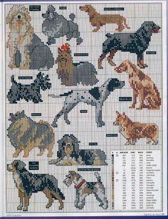 As 3 Artes: cachorros e ponto cruz