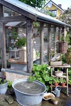 Beautiful potting shed - or is it a potting glasshouse?