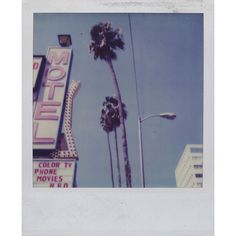 Polaroids with The Kills ❤ liked on Polyvore featuring home, home decor, wall art, polaroids, fillers, pictures, backgrounds, photos, photo wall art and cafe wall art