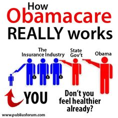 The REAL Obamacare Flow Chart Graphic - The Ulsterman Report